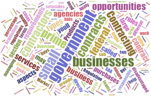 Government Procurement Word Cloud