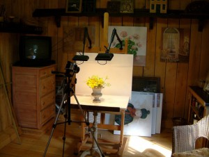 Studio with Camera, Lighting and, Flowers in a Vase