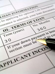 Loan Application - cash flow forecast
