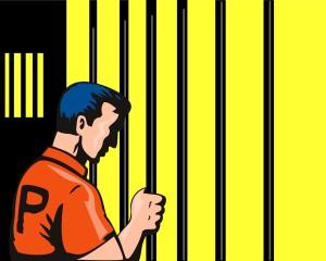 Prisoner Holding Jailbar